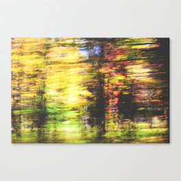 speed of fall Canvas Print