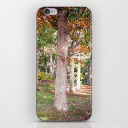 Trees at Wellesley  iPhone Skin