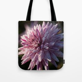 Summer's Finish Tote Bag