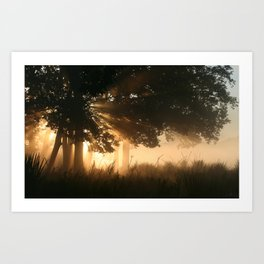 Magic of elves Art Print