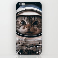 Space catet iPhone Skin