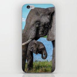 Safari iPhone Skin