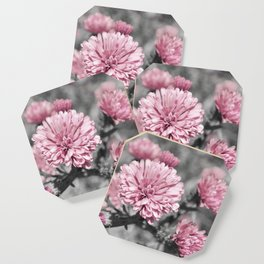 Blushing Gray Coaster