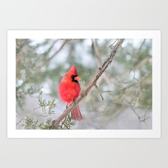Winter's End Cardinal Art Print