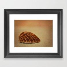 Shell Game Framed Art Print