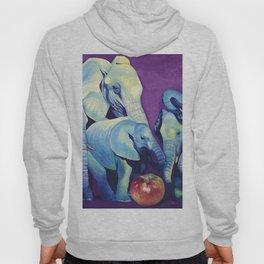 Elephat's Soccer Hoody
