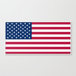 Flag of USA - American flag, flag of america, america, the stars and stripes,us, united states Canvas Print