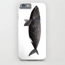 Northern right whale (Eubalaena glacialis) iPhone Case