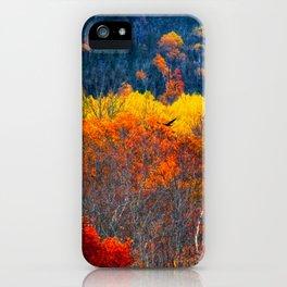 Katahdin Foliage (5) iPhone Case