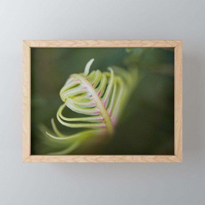 Furl Framed Mini Art Print