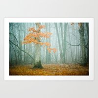 woods Art Prints featuring Autumn Woods by Olivia Joy StClaire