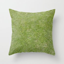 Lawn Throw Pillow