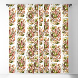 Ernst Haeckel Nepenthaceae Pitcher Plant Blackout Curtain