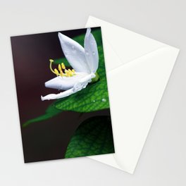 drop that flower Stationery Cards