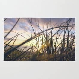 Sun light is coming through green grass in the sun set with sea in the behind and cloudy sky Rug
