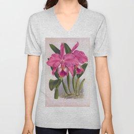 Cattleya Labiata Vintage Deep Pink Orchids Unisex V-Neck