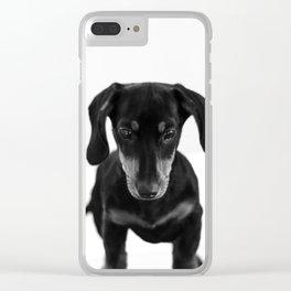 Weenie dog (black and white) Clear iPhone Case