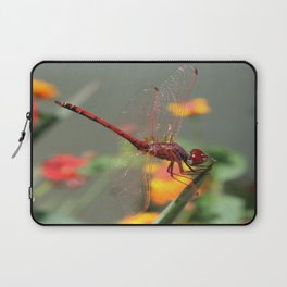 Red Skimmer or Firecracker Dragonfly With Lantana Background Laptop Sleeve