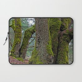 TWO BIG LEAF MAPLE TREES Laptop Sleeve