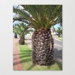 Pineapple Tree Canvas Print