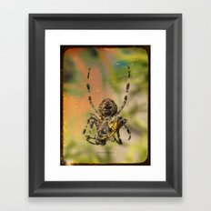 LUNCH WITH MR SPIDER 002 Framed Art Print