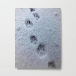 Pawprints in the winter snow Metal Print