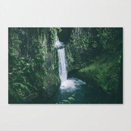 Toketee Falls II Canvas Print