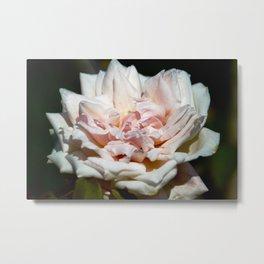 Hollywood Flower Metal Print