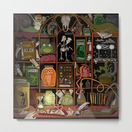 Cabinet of Curiosities (color) Metal Print