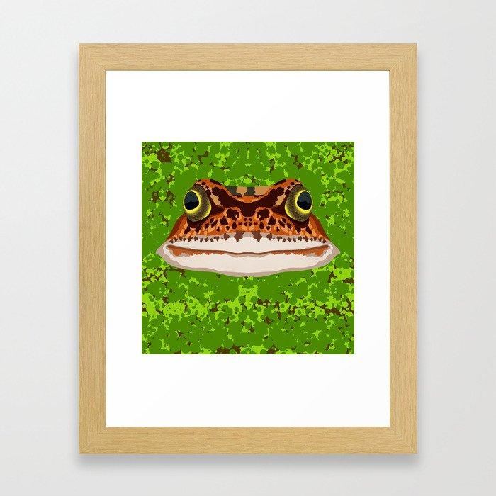 Frog Pond Framed Art Print