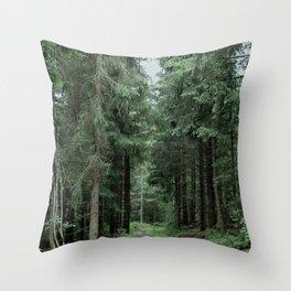 Running Path Throw Pillow