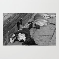 Greek Dogs Rug