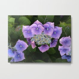 Purple Posy Perfection Metal Print