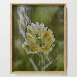 Yellow common Toadflax flower Serving Tray