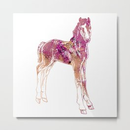 Standing Foal Metal Print