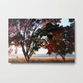 Australian Autumn Landscape Metal Print
