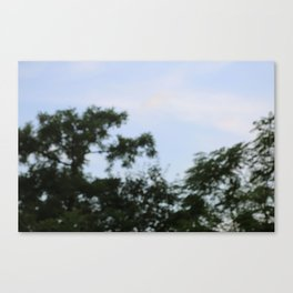 sky plants blur Canvas Print