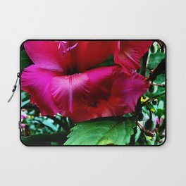 Blushing Gladiola Laptop Sleeve