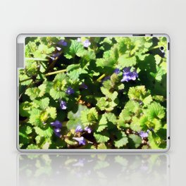 Ground Ivy 06 Laptop & iPad Skin
