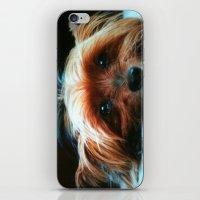 yorkie iPhone & iPod Skins featuring Yorkie Love by SunShineInMySky