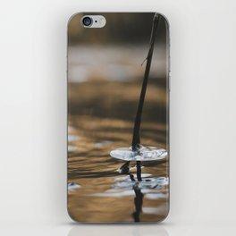 Autumn ICE iPhone Skin