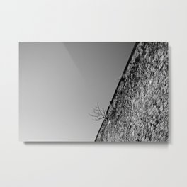 Penitentiary Wall Metal Print