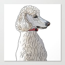 Kyah the White Standard Poodle Canvas Print