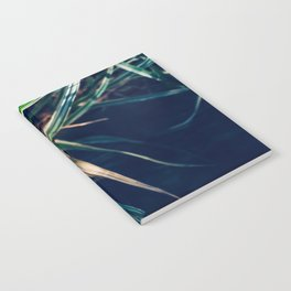 Coffee and Plants Notebook