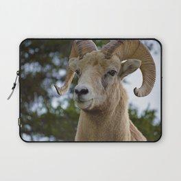 Big Horn Sheep in Jasper National Park Laptop Sleeve