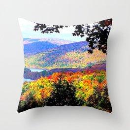 Cabsink16DesignerPatternIP Throw Pillow