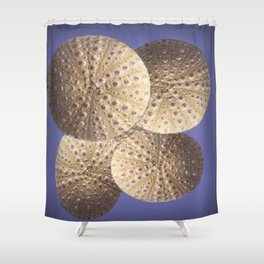 Organic Textured Egg Shell White Sea Urchin Shells Shower Curtain