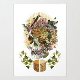 """memento mori"" anatomical collage art by bedelgeuse Art Print"