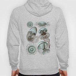 Ernst Haeckel Jellyfish Leptomedusae Cyan Brown Hoody