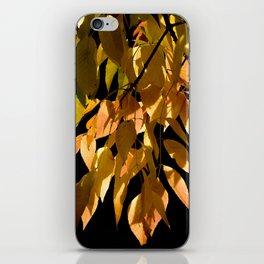 Canadian white ash iPhone Skin